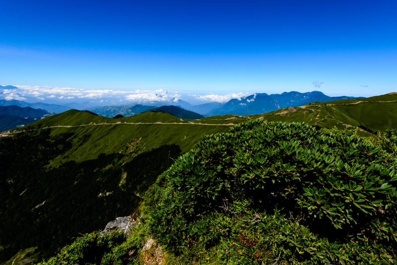 合歡山東峰-63