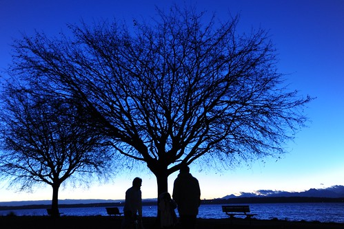 We were there, silhouettes, waterway, Olympic Mountains, the blue sound, bare trees, Golden Gardens Park, Seattle, Washington, USA by Wonderlane