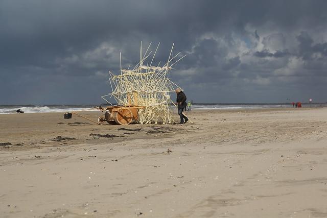 uros kirn 4 apodiacula at silent beach 2013
