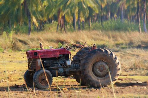 tractor sunrise dawn farm guyana equipment coconuttrees eastcoastdemerara
