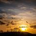 Coucher de soleil 2 @ Acquigny (27) ©Paul Tridon