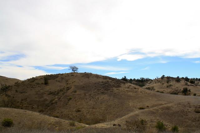 open space preserve