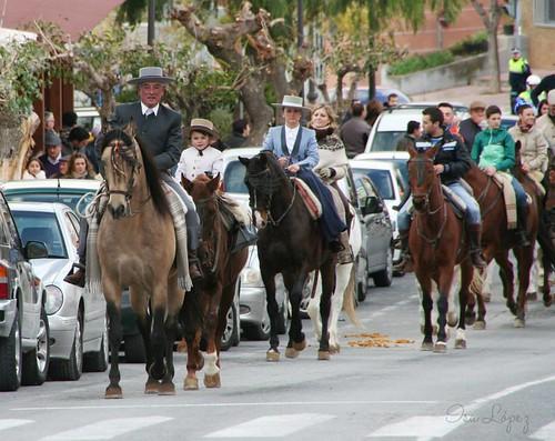Celebración día San Antón en Moratalla 2014
