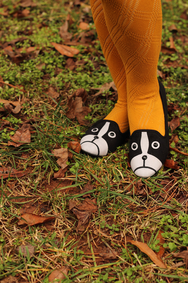 Yellow Patterned Tights and Boston Terrier Shoes