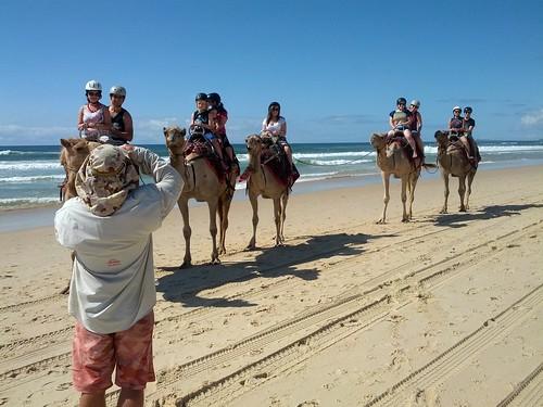 Camel Riding 2