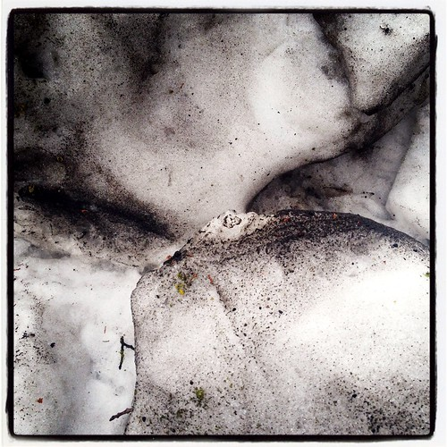 stormsgone by Nature Morte