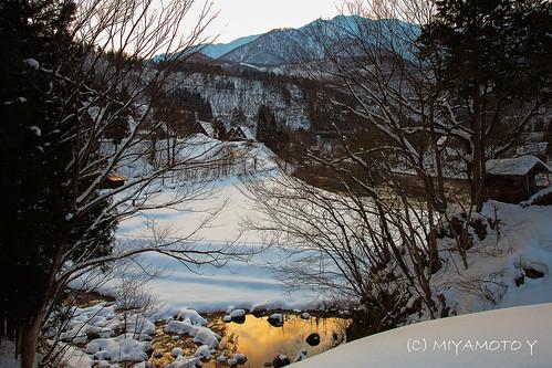 winter sunset snow tree japan shirakawago