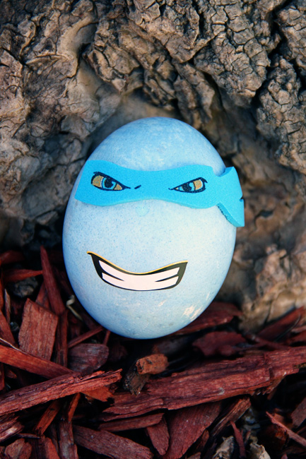 Close-up-of-blue-ninja-egg