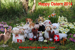 Oster2014