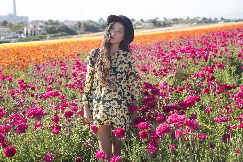 flowerfields resize