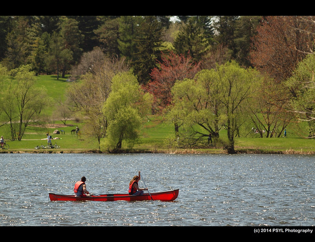 Canoers on Dow's Lake