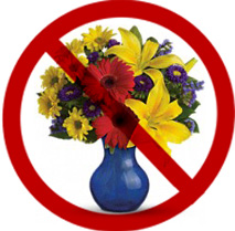 Mt. Desert RNs Call on Hospital to Forgo Flowers and Address Patient Safety for Nurse Week