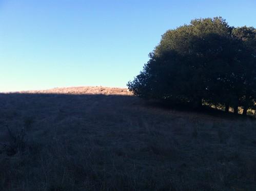 Winter hill Grass Valley Trail