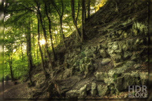 park trees sunset summer nature leaves wales rocks ghost country north cymru dramatic surreal foliage imagination drama sureal hdr loggerheads denbighshire