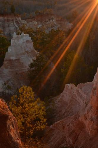 sunset pine ga georgia erosion flare pinetrees beams sunbeams providencecanyon kaolin redgeorgiaclay stewartcountygeorgia providencecanyonstateoutdoorrecreationarea
