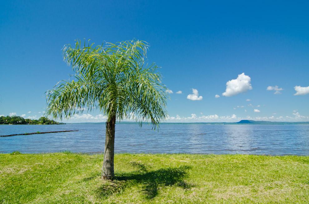 Mientras que al sur del país se congrega la mayor cantidad de turistas para disfrutar de sus aguas, en el Departamento Central el Lago Ypacaraí descansa de la multitud. (Elton Núñez)