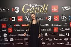 Catifa vermella VII Premis Gaudí (53)
