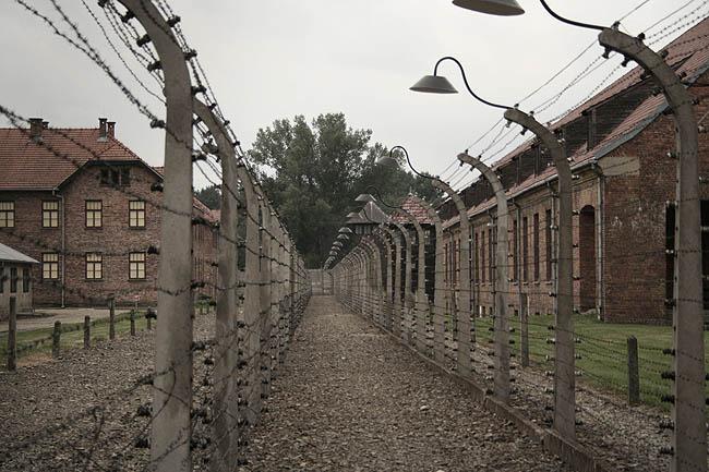 Alambradas en Auschwitz. © Paco Bellido, 2008