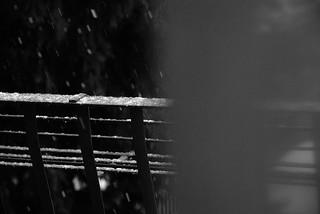 (un)veiled snow