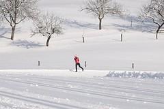 Velké Karlovice hlásí ideální podmínky pro běžkaře, upraveno je 40 km