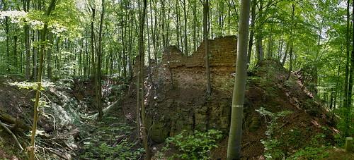 Haimburg Castle Ruin  I