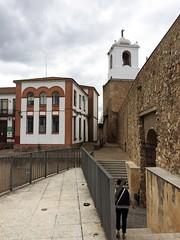 IMG_1102- JEREZ, Spanien