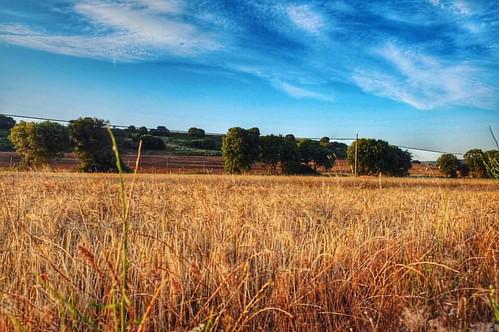 #masegosodetajuña #guadalajara #spain #alcarria #landscape #sky