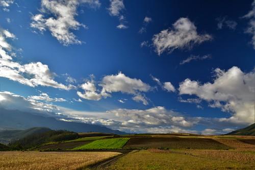 ecuador maiz fields campo sky cielo azul paisaje landscape corn pastizal