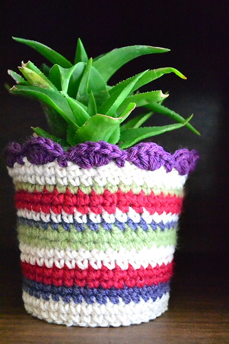 Striped Plant Cozy