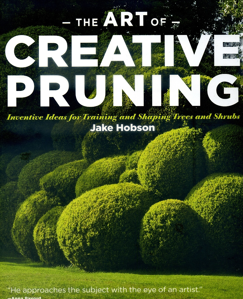 The art of creating pruning