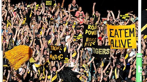 Richmond fans - herald sun website image