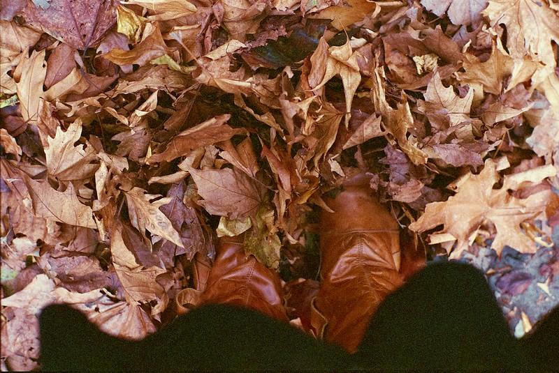 Autumnal!