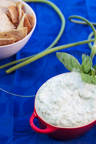 Garlic Scape Dip | girlinthelittleredkitchen.com