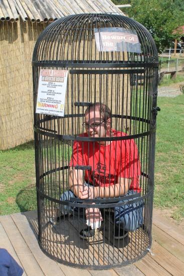 Petting Zoo, 4