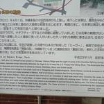 The Battle at Kakazu Ridge