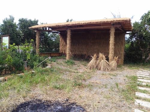新搭建的茅草屋,未來要作為推廣無毒有機農業的據點。