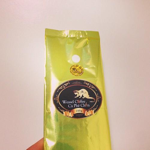 루왁커피, 고양이똥커피, 사향커피를 먹어보겠네!! 고마워 대식아!! #luwak #coffee