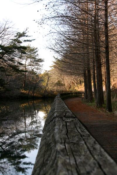 満濃池と公園