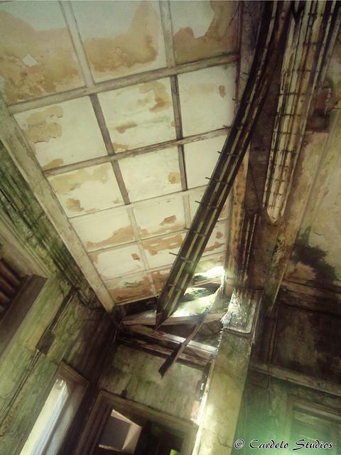 Istana Woodneuk 08