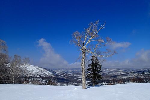 japan hokkaidoprefecture skiスキー yoichidistrict hokkaodo北海道 kirororesortキロロ・リゾート tg2p3310506