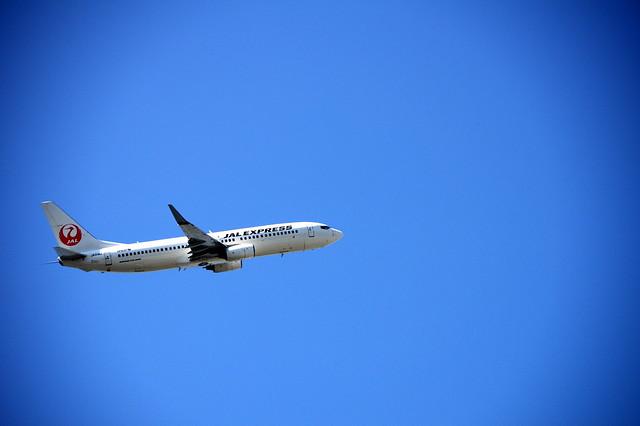 城南島海浜公園で飛行機とねこを撮る。_027