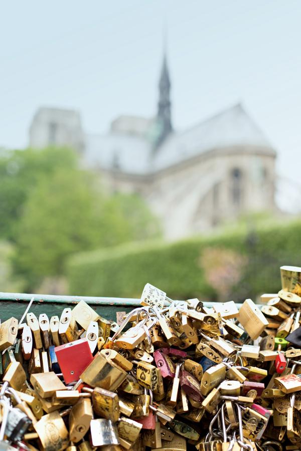 Notre Dame + Pont de l'Archevêché