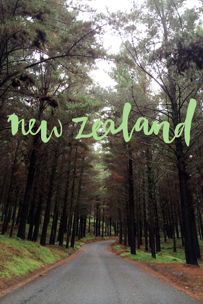 New Zealand road trip www.apairandasparediy.com