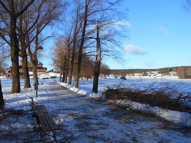 Laina-myrskyn vaikutuksia, 8.2.2015 Hämeenlinna; katkennut hopeasalava