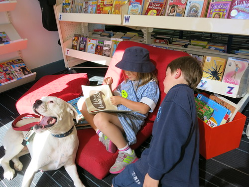 Reading to dogs 12 February 2015. Reading to dogs. Papanui Library. Flickr 2015-02-12-IMG_5126