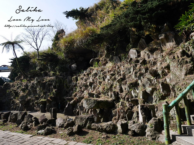 陽明山賞櫻花景點水濂洞 (3)