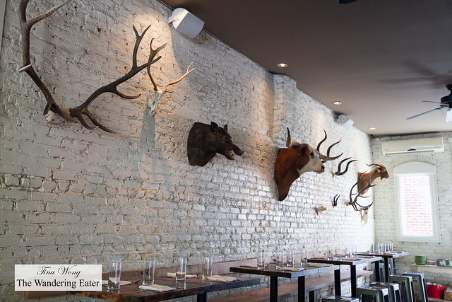 Taxidermy on the walls