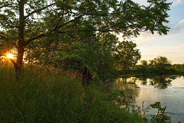 Farm Pond Buzz