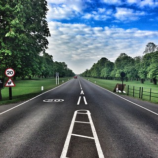 #bushypark #teddingtongate towards #hamptoncourtpalace #teddington #kingston #twickenham #richmond #london #london_only #uk #greatbritain #britain #snapseed