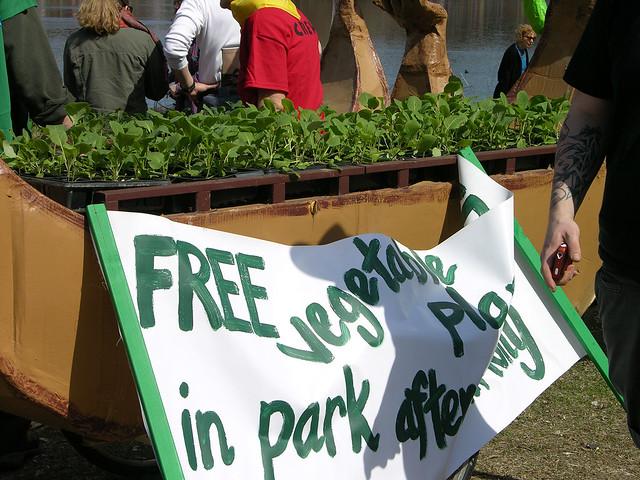 MayDay 2013 free vegetables